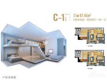 C-1户型