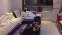 (城厢)金御湾2室2厅1卫140万96m²出售